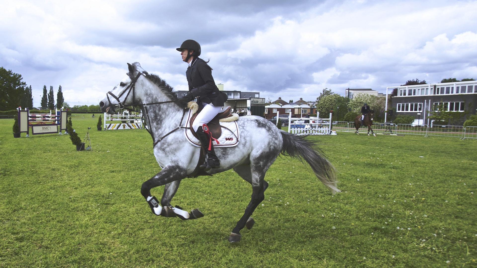 Hevoset ja ratsastus urheilulajina