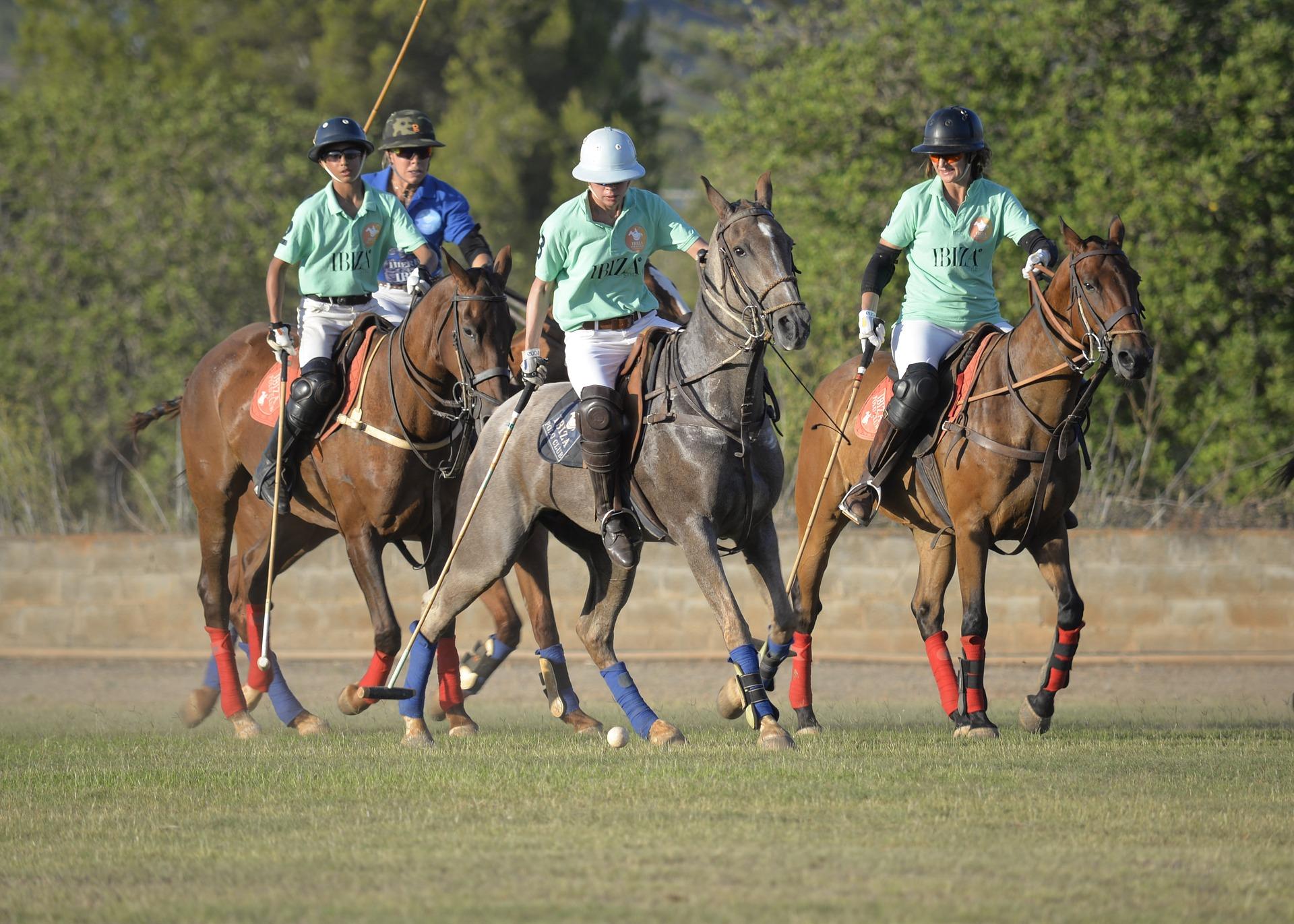 Pallopelit hevosurheilussa; polocrosse ja poolo